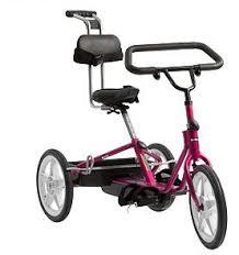 三輪車ラズベリー